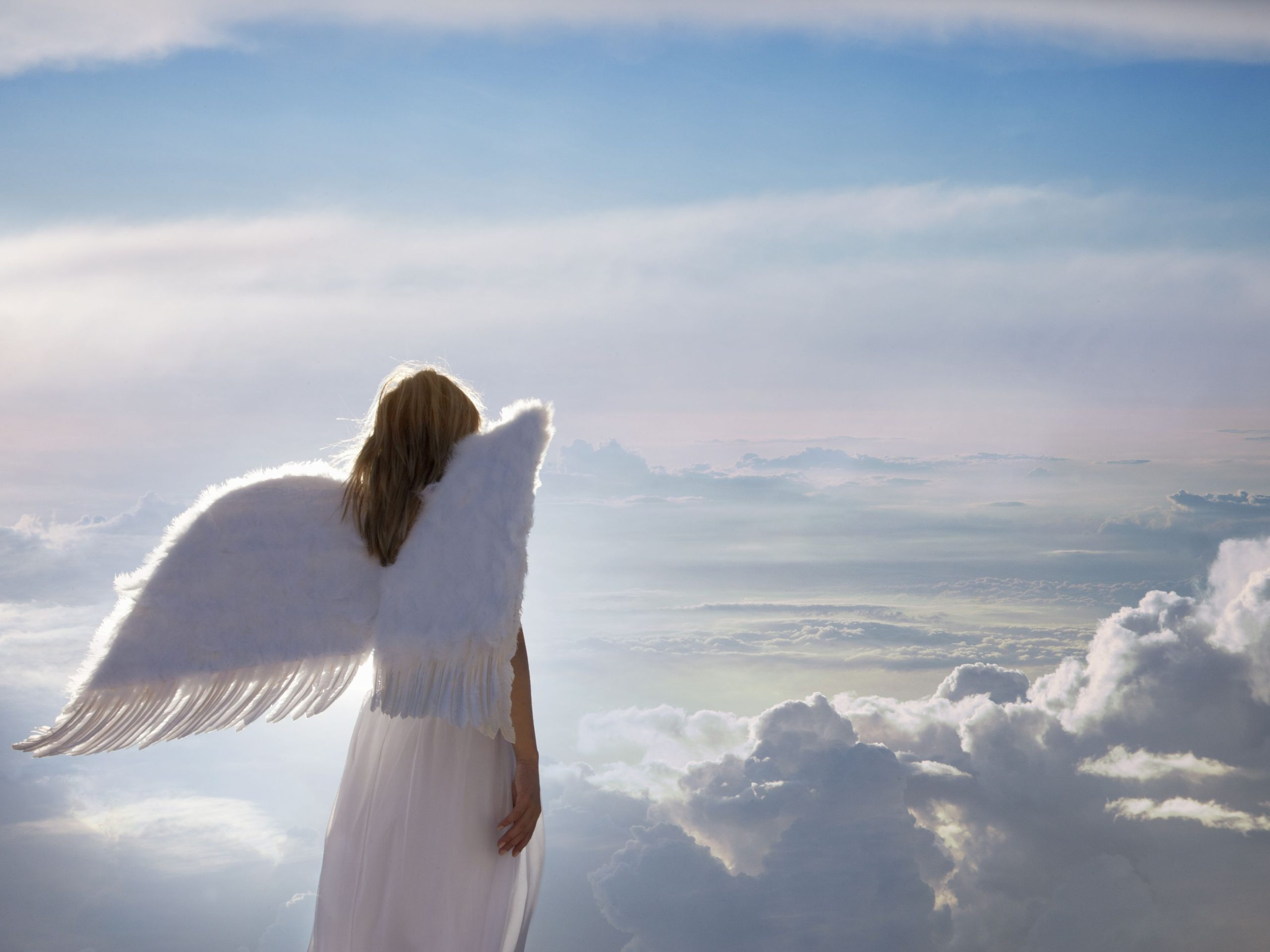 How to Get Angel Investors For Your Business